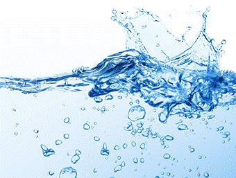 水溶性プロテオグリカン